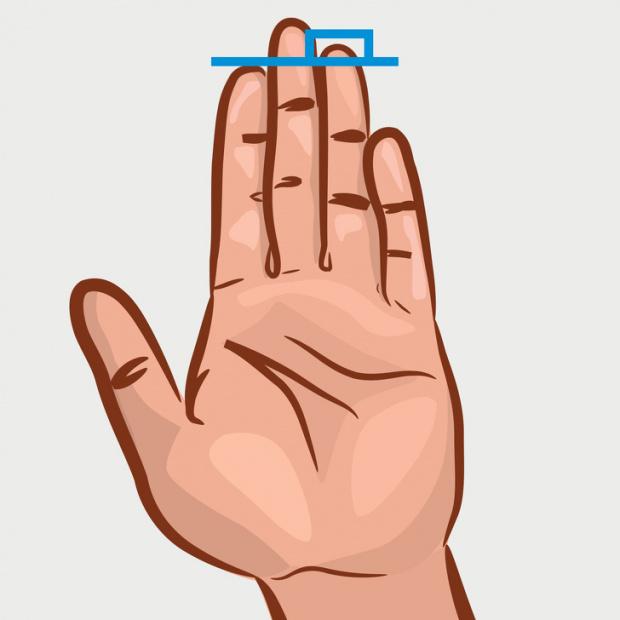 Мъжете с по-дълъг безименен пръст са изложени на по-нисък риск