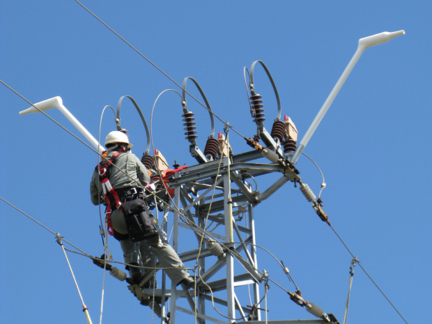 """Проектът """"Живот за царския орел"""" (Life for safe grid) е"""