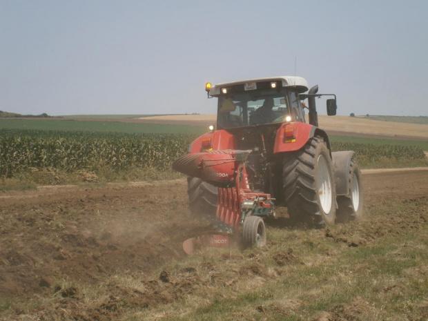 Браншовите организации на зеленчукопроизводителите сами ще решат как да бъдат