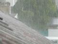 Дъжд и гръмотевици на запад, в останалите части на страната времето ще е хубаво