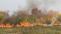 Нови няколко пожара в Ямболско