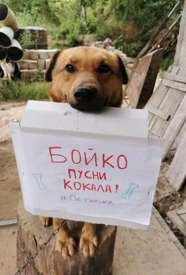 Продължават протестите срещу правителството на Бойко Борисов и главния прокурор.