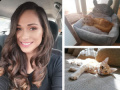 Търси се осиновител на котката на загиналата с мотор приказно красива лекарка Мериян Радева