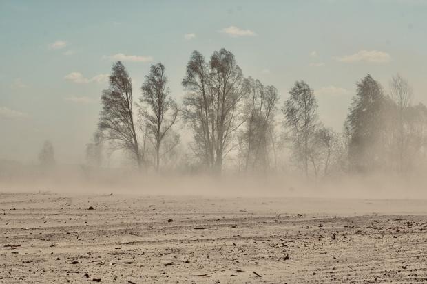 В Пхенян притеснени от пясъчна буря, която може да им донесе COVID-19 от Китай