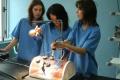 Медсестрите няма да стават защитена професия, а приоритетно направление