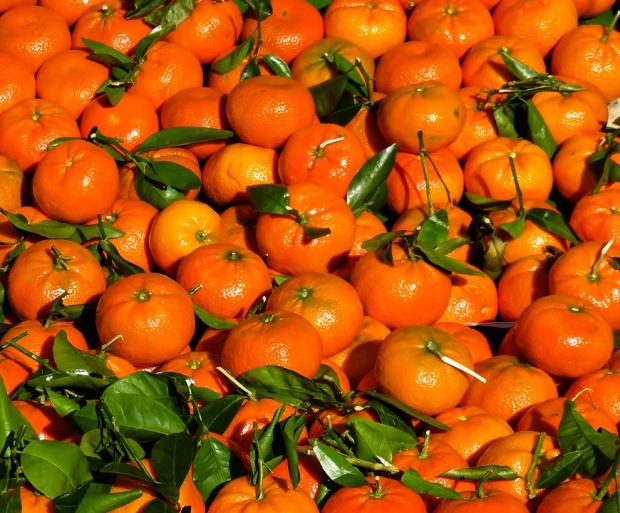Над 512 тона плодове и зеленчуци с пестициди са спрени да влязат в България през октомври