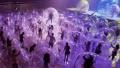 Изкуство по време на пандемия: Рок групата откри начин да направи концертите си безопасни (ВИДЕО)