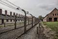 76 години от освобождението на концлагера Аушвиц - отбелязват го дистанционно