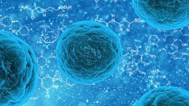 Хората, които са прекарали COVID-19, са защитени от повторна инфекция