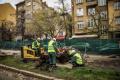 """Преместват дървета от площад """"Македония"""" в Южен парк"""