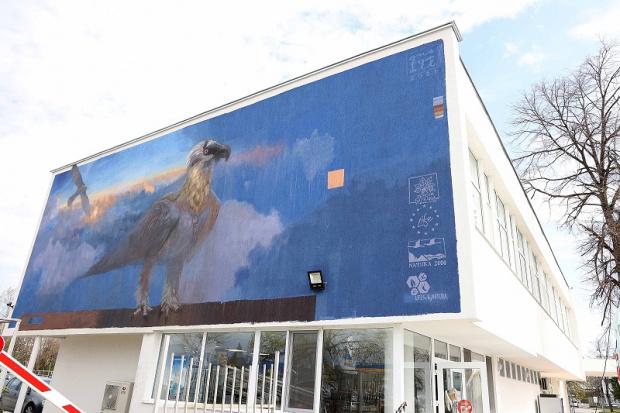 Мащабен графит на символа на българската природозащита брадатия лешояд вече ще посреща гостите на Пловдив