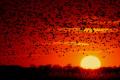 Очаква ни слънчев ден, но на места ще има мъгла! Следобед на Северна България са възможни кратки валежи