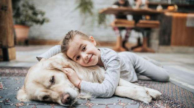 Пухкава терапия: Кучетата помагат на учениците да се справят със стреса
