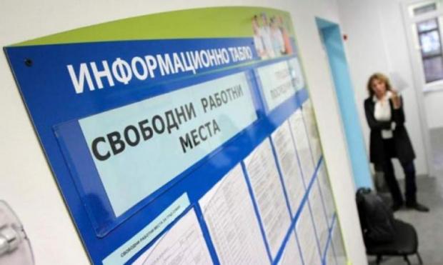Агенцията по заетостта обяви последни седмици за кандидатстване по антикризисните