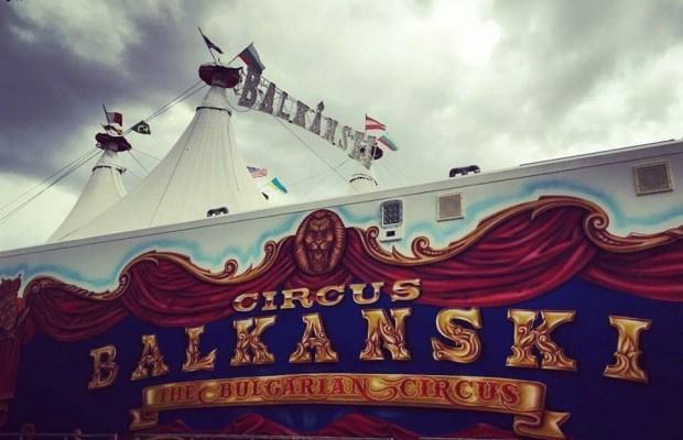 Любители на цирковото изкуство ще могат да посетят отново цирк