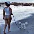 Как да предпазите кучето си в летните жеги - ето 4 начина