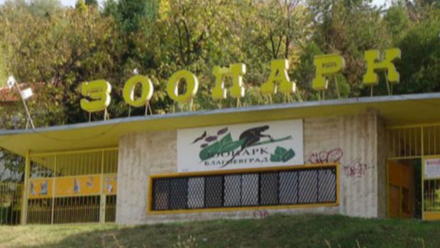 Зоопаркът в Благоевград няма да затваря, получи лиценз за още 5 години