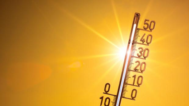 Почти 50-градусова жега измъчва през последните дни Източна Турция, като