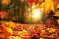 Астрономическата есен настъпва довечера в 22:21 часа