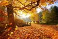 Иде затопляне през октомври: Около и над 20 градуса