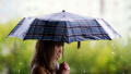 Чака ни дъждовен ден, не забравяйте чадъра