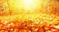 Иде сух октомври и златна есен в края на месеца