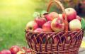 Малки тайни: Храни, с които може да прекаляваш, без да надебеляваш